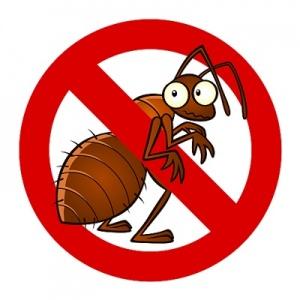anti-ant sign