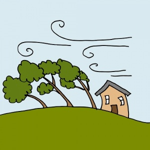 tree and house being blown by wind