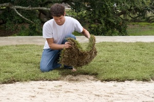 person laying sod